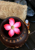 Spa And Wellness Image. Essential oil of spa aromatheraphy Royalty Free Stock Photography