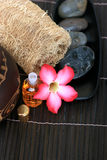 Spa And Wellness Image. Essential oil for spa aromatheraphy Royalty Free Stock Photo