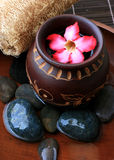 Spa And Wellness Image. Pink frangipani with zen stone Stock Photo