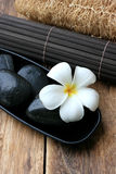 Spa And Wellness Image. White frangipani with zen stone Stock Image
