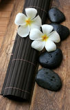 Spa And Wellness Image. White frangipani with zen stone Stock Images