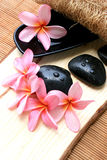 Spa And Wellness Image. Pink Frangipani With Zen Stone Royalty Free Stock Photography