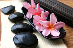 Spa And Wellness Image. Pink Frangipani With Zen Stone Stock Image