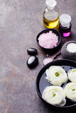 Spa and wellness massage with oil, salt and stones Royalty Free Stock Photography