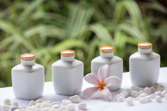 Spa and wellness setting with natural soap, stones and towel on the green background . Stock Image