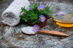 Spa and wellness setting with sea salt, oil essence, flowers and Royalty Free Stock Photography