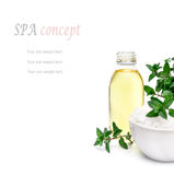 Spa and wellness setting with sea salt, oil essence, flowers and. Towels isolated. Relax and treatment therapy. White background. Selective focus. Close up Royalty Free Stock Photo