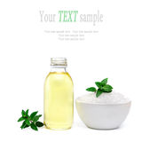 Spa and wellness setting with sea salt, oil essence and mint Stock Image