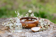 Spa and wellness setting with sea salt, oil essence, flowers and Royalty Free Stock Photo