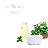 Spa and wellness setting  sea salt, oil essence and mint isolate Stock Photography