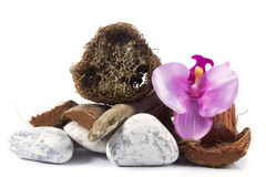 Spa and wellness setting with towel, orchid, wooden parts, natur Stock Photos