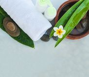 Spa or wellness setting with tropical flowers, bowl of water stock images