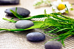 Spa wellness: stones for massage Stock Photography