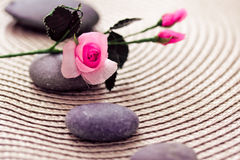 Spa wellness: stones for massage and rose. A spa-inspired shot of stones and pink rose Stock Photography