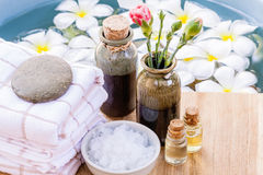 Spa and wellness treatment Royalty Free Stock Photo