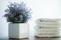 Spa. White Cotton Towels Use In Spa Bathroom. Towel Concept. Photo For Hotels and Massage Parlors. Purity and Softness royalty free stock photo