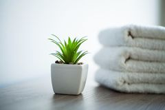 Spa. White Cotton Towels Use In Spa Bathroom. Towel Concept. Photo For Hotels and Massage Parlors. Purity and Softness stock photo