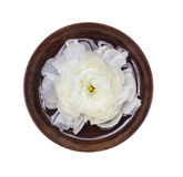 Spa white flower in wooden bowl with water, isolated Royalty Free Stock Photos
