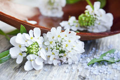 Spa white flowers and spa sea salt Stock Photo