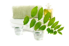 Spa With Herbal Tincture Stock Photography