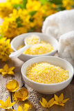 Spa with yellow herbal bath pearls and flowers Stock Images
