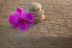 Spa Zen Orchids Thailand Stock Image