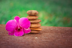 Spa Zen Orchids Thailand Royalty Free Stock Photo