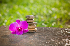 Spa Zen Orchids Thailand Stock Photography