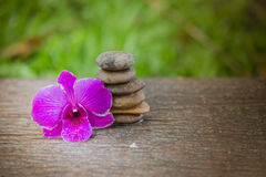 Spa Zen Orchids Thailand Royalty Free Stock Images