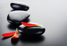Spa Zen Stones. Beautiful Spa Zen Stones and red petals.With copy space