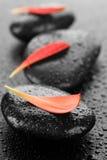 Spa Zen Stones. Beautiful Wet Spa Zen Stones and red petals.Selective focus royalty free stock image