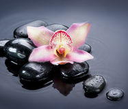 Spa Zen Stones. Over Black Stock Image