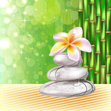 Stones and  frangipani flower Royalty Free Stock Photos
