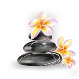 Spa stones and  frangipani flowers Royalty Free Stock Photo