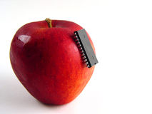 Spaander-aanval op rode appel! Stock Fotografie