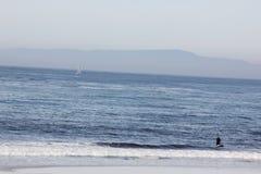 Spaans Baaistrand op het gebied van het Kiezelsteenstrand, 17 mijlaandrijving, Californië, de V.S. Royalty-vrije Stock Afbeeldingen