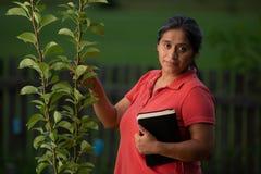 Spaans Christian Woman Touching Pear Tree en haar Bijbel royalty-vrije stock afbeelding