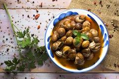 Spaanse caracoles Engelse salsa, gekookte slakken in saus stock foto's