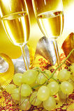 Spaanse cava en de druiven van geluk stock afbeeldingen