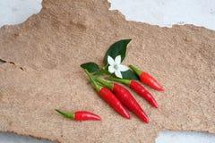 Spaanse peper Royalty-vrije Stock Afbeeldingen