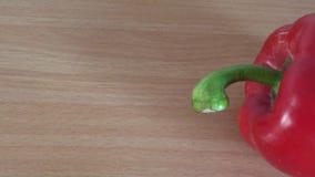 Spaanse peper stock videobeelden