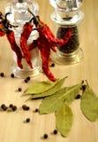 Spaanse peper & zwarte peper Stock Afbeelding