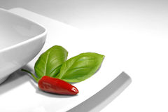 Spaanse peper en basilicum Stock Fotografie
