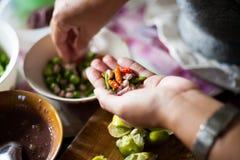 Spaanse peper en galic royalty-vrije stock foto's