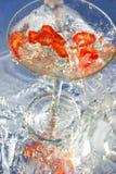 Spaanse peper Martini Royalty-vrije Stock Foto