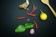 Spaanse peper met gember met aubergines met Thaise ui met houten lepel op zwarte achtergrond Royalty-vrije Stock Afbeeldingen