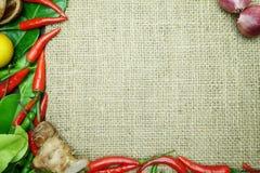 Spaanse peper met het blad van de gember kaffir kalk met Thaise ui op juteachtergrond Royalty-vrije Stock Afbeeldingen
