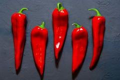 Spaanse peper op een donkerblauwe oppervlakte tegen een achtergrond van kruiden, ruimte voor tekst, hoogste mening Stock Afbeelding
