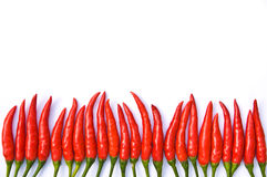 Spaanse peper op witte achtergrond Stock Afbeelding
