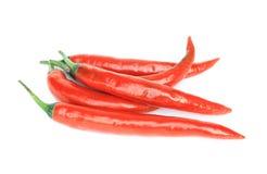 Spaanse peper op witte achtergrond Stock Foto